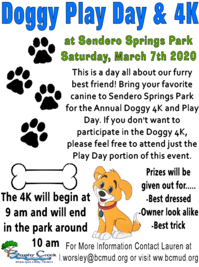 Doggy Play Day Flyer- Colored